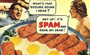 spam-570x349